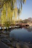 Puente sobre el lago en parque Fotos de archivo libres de regalías