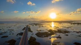 Puente sobre el pantano Foto de archivo libre de regalías