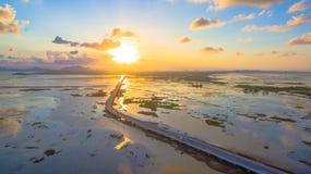 Puente sobre el pantano Imagen de archivo libre de regalías