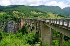 Puente sobre el río de Tara imagen de archivo