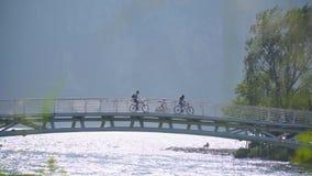 Puente sobre el r?o almacen de metraje de vídeo