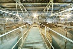 Puente sobre las cisternas grandes para la cerveza en Ochakovo Imagenes de archivo