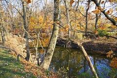 Puente sobre parque profundo del condado del río Fotografía de archivo