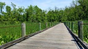 Puente sobre prados Foto de archivo
