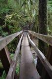Puente sobre una cala Fotografía de archivo