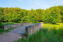 Puente sobre una corriente que serpentea a través de un bosque fotografía de archivo