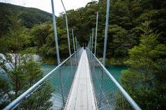 Puente suspendido al bosque fotografía de archivo libre de regalías