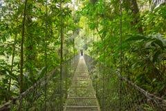 Puente suspendido, Costa Rica fotografía de archivo libre de regalías