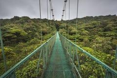 Puente suspendido en Costa Rica fotografía de archivo