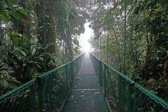 Puente suspendido en Monteverde fotografía de archivo libre de regalías