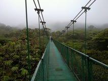 Puente suspendido en Monteverde, Costa Rica Imagen de archivo