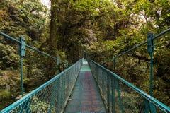 Puente suspendido sobre el toldo de los árboles en Monteverde, Costa Rica fotos de archivo