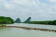 Puente tropical Tailandia de la bahía de Krabi Imágenes de archivo libres de regalías