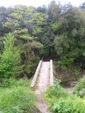 Puente viejo del paisaje verde corso Foto de archivo libre de regalías