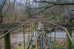 Puente viejo del pie Imágenes de archivo libres de regalías