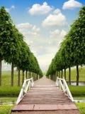 Puente y camino Imagenes de archivo