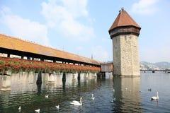 Puente y cisnes de la capilla en Lucerna fotos de archivo libres de regalías