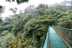 Puentes colgantes de Costa Rica - Monteverde Fotos de archivo