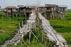 Puentes de bambú. Fotos de archivo