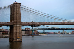 Puentes de East River en Nueva York Imagen de archivo libre de regalías