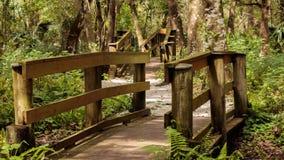 Puentes de madera del rastro del parque Imágenes de archivo libres de regalías