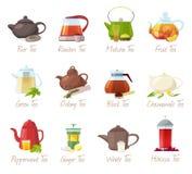 Puer-tè di vettore del tè e rooibos o bevande fruttate di matcha nell'insieme bevente dell'illustrazione della teiera di tè verde illustrazione di stock