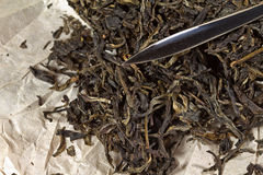Puer tea with a puer knife Royalty Free Stock Image