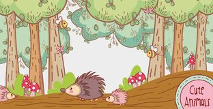 Puercos espines en el bosque Fotografía de archivo libre de regalías
