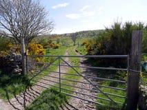 Puerta al pasto en Escocia Imagen de archivo