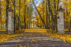 Puerta antigua en el parque Foto de archivo libre de regalías