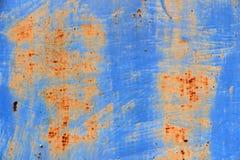 Puerta azul del metal en moho Foto de archivo