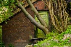 Puerta bloqueada por el árbol Imagen de archivo libre de regalías
