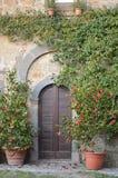Puerta clásica Foto de archivo libre de regalías