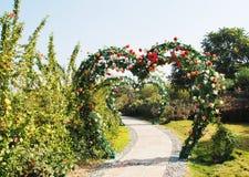 Puerta color de rosa en forma de corazón imagen de archivo libre de regalías
