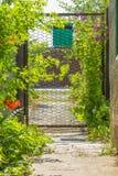 Puerta con el buzón en un día de verano, en contraluz Imágenes de archivo libres de regalías