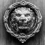 Puerta con el golpeador de cobre amarillo en la forma de un león, entra hermoso Fotografía de archivo libre de regalías