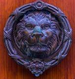 Puerta con el golpeador de cobre amarillo en la forma de un león, entra hermoso Fotos de archivo libres de regalías