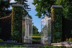 Puerta-con-flores Imagen de archivo