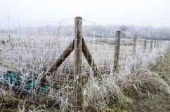 Puerta congelada Imagen de archivo