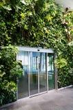 Puerta de cristal en el jardín vertical, pared verde de vida con las plantas imagen de archivo libre de regalías