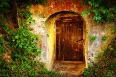 Puerta de entrada vieja en bodega del bosque Foto de archivo libre de regalías
