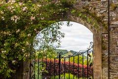 Puerta de jardín hermosa, vieja con la hiedra y rosas que suben Foto de archivo libre de regalías