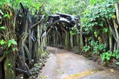 Puerta de la naturaleza Imagen de archivo libre de regalías
