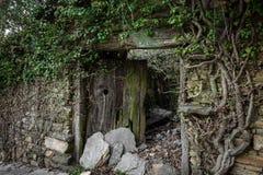 Puerta de madera arruinada vieja Imagen de archivo