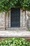 Puerta de madera con la vegetación Imagen de archivo libre de regalías