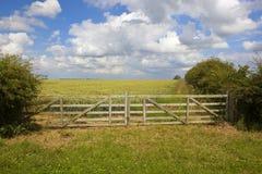 Puerta de madera del campo Foto de archivo
