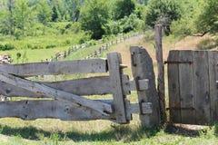 Puerta de madera del tablón Imagenes de archivo