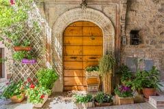 Puerta de madera elegante con las macetas Fotografía de archivo libre de regalías