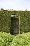 Puerta de madera en seto Foto de archivo libre de regalías