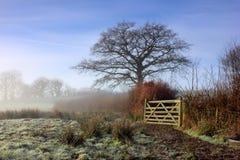 Puerta de madera en un Hedgeline Imagen de archivo libre de regalías